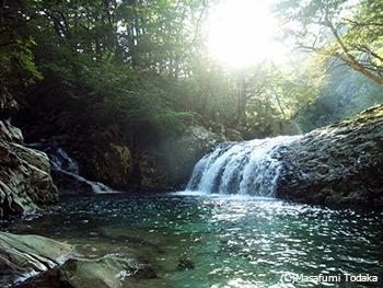 清らかな水と緑 郷里、大分の山にて